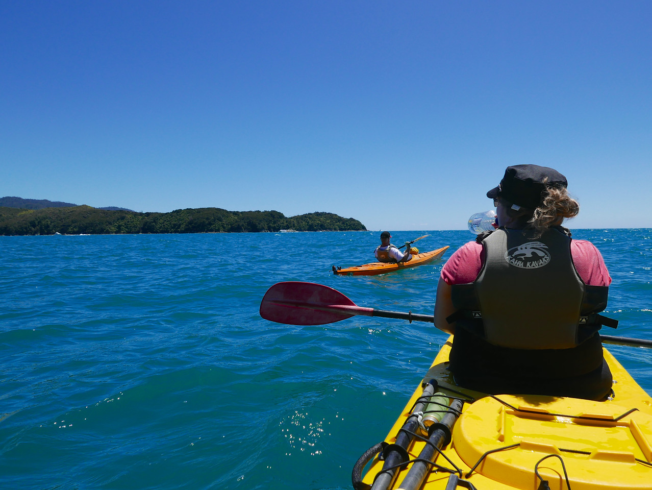 Kim Robert Abel Tasman Kayaking January 2016