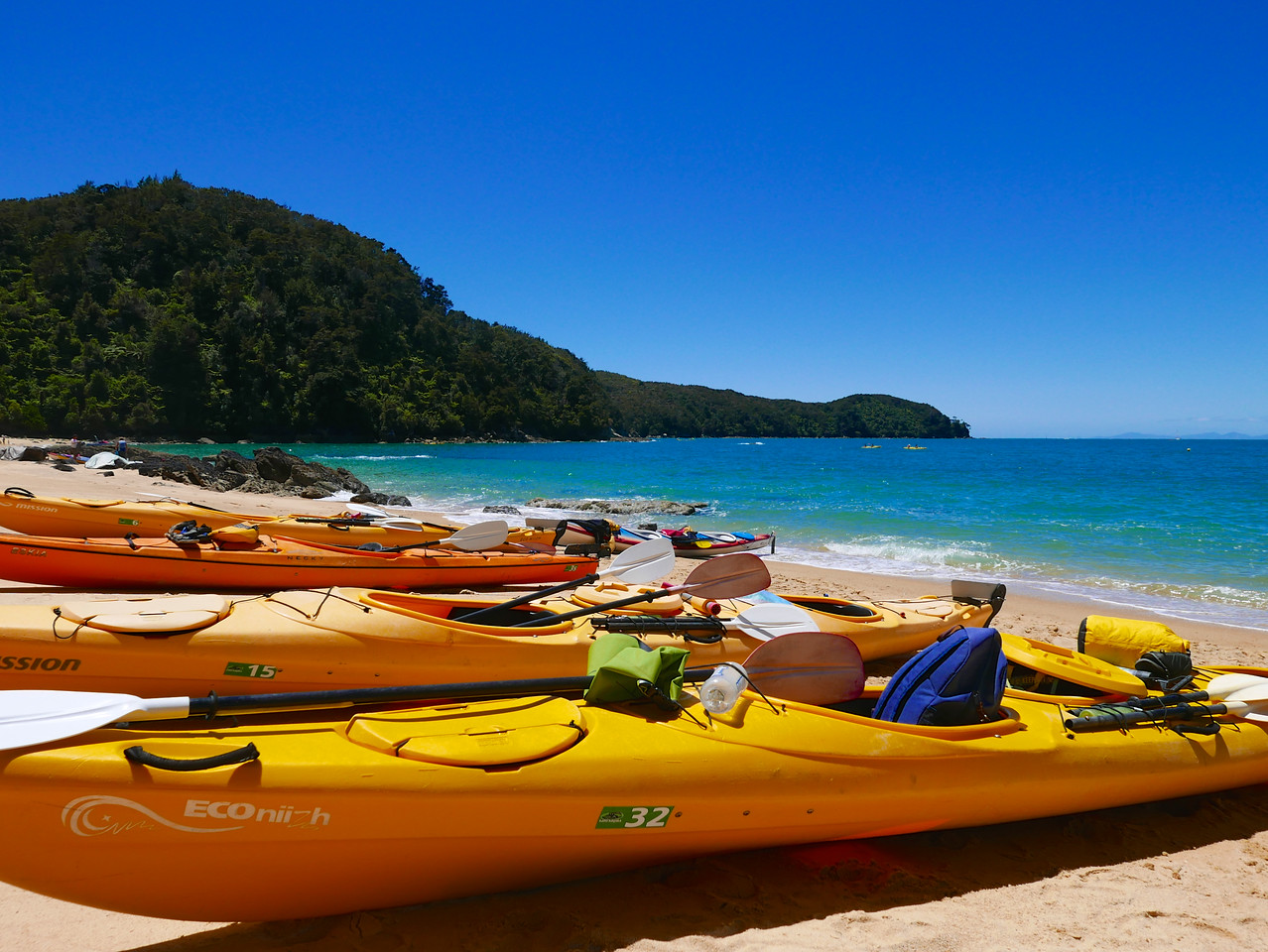 Abel Tasman Kayaking January 2016