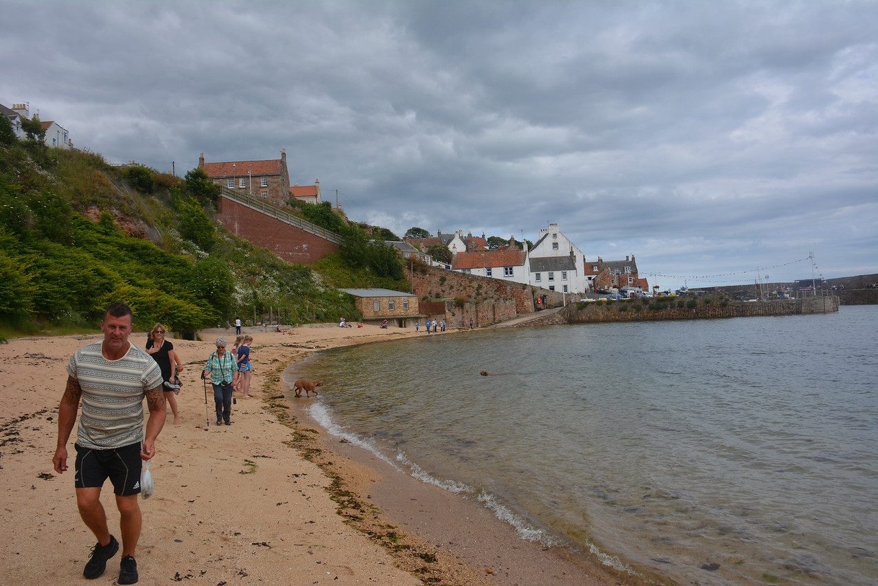 Fife Coast Crail July 2014